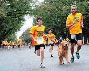 Buenos Aires y Rosario vuelven a correr consus mascotas, de la mano de Revolution Dogrun
